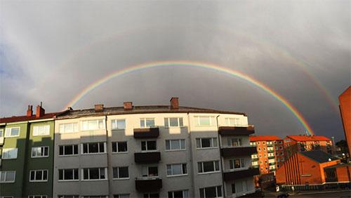 double rainbow malmö