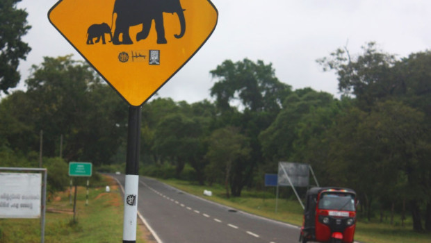 warning elephant sign