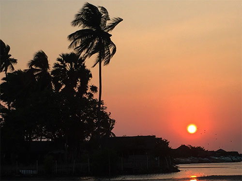 sunset with palms sri lanka