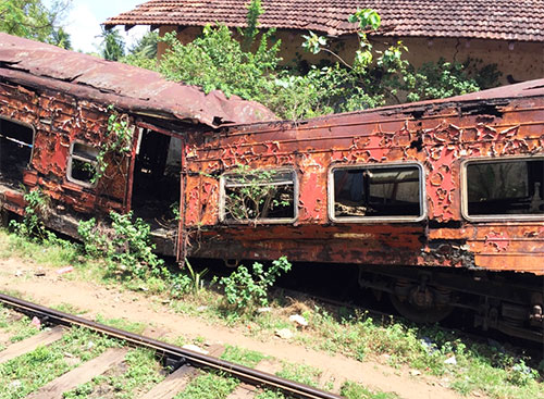overgrown trains